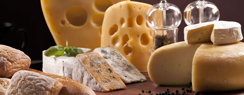 Los tipos de quesos más ricos del mundo